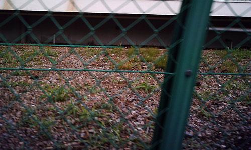 20170711_fence.jpg