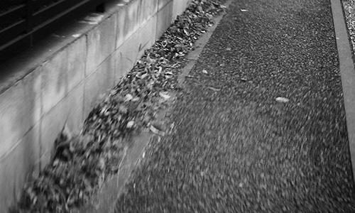 20170806_sidewalk.jpg