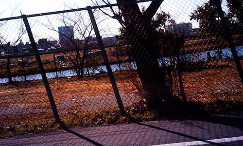 20190615_river.jpg
